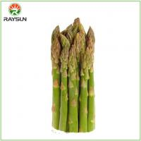 Wholesale Organic Canned Asparagus from china suppliers