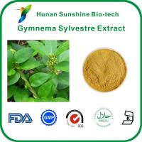 Wholesale Gymnema Sylvestre Extract from china suppliers