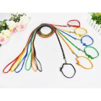 Leash and Collars Shining pattern/LC(2)